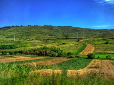 diorama-effect-of-a-summer-landscape
