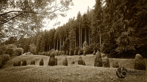 https://photos4print.files.wordpress.com/2014/08/forest-glade-with-hayracks.jpg