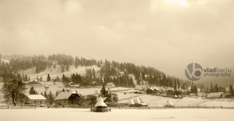 winter-landscape-in-sepia-tone