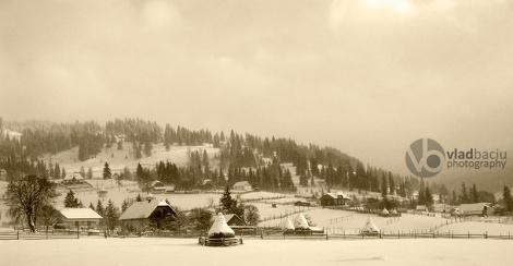 winter-landscape-in-sepia-tone