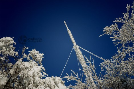 photos-for-print-Communication-pole-covered-with-snow-in-a-sunny-winter-day