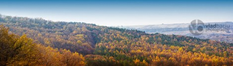 fine-art-photo-for-print-autumn-panorama-with-colored-forest-with-diorama-effect